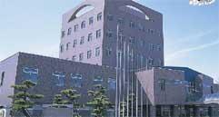 新潟国際情報大学